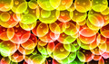 Colorful glow bubble dark background Stock Photography