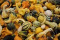Colorful gourds stacked on top of each other Royalty Free Stock Images