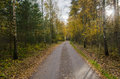 Colorful gravel road by fall Royalty Free Stock Photo
