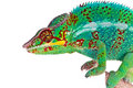 Colorful green Chameleon Stock Images