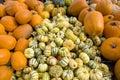 Colorful Halloween pumpkins Stock Photos