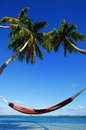Colorful hammock between palm trees ofu island vavau group to tonga Royalty Free Stock Photos