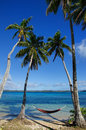 Colorful hammock between palm trees ofu island vavau group to tonga Stock Photo