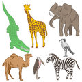 Colorful Hand Drawn African Animals and Birds. Doodle Drawings of Elephant, Zebra, Giraffe, Camel, Marabou and Secretary-bird. Fla