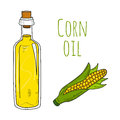 Colorful hand drawn corn oil bottle Royalty Free Stock Photo