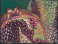 Colorful hand drawn detail of a pomegranate cut in half Royalty Free Stock Image