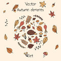 Colorful hand drawn set of vector autumn elements.