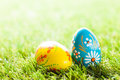 Colorful hand painted Easter eggs in grass. Spring theme Royalty Free Stock Photo
