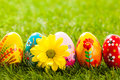 Colorful hand painted Easter eggs and spring flowers in grass