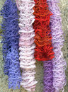 Colorful hanging scarves. Color image Royalty Free Stock Photo