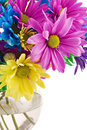 Colorful High Key Flowers Royalty Free Stock Images