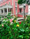 Colorful house and rose garden in historic city of Oviedo, Spain Royalty Free Stock Photo