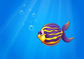 A colorful hungry fish under the sea illustration of Royalty Free Stock Photos