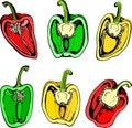 Colorful illustration halves of sweet pepper