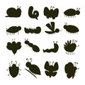 Colorful insects silhouette icons isolated wildlife wing detail caterpillar bugs wild vector illustration. Royalty Free Stock Photo