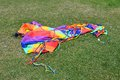 Colorful kite on lawn under sunny Royalty Free Stock Photography