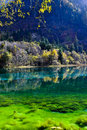 Colorful lake in Jiuzhaigou Stock Photos