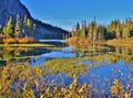 Colorful lake and landscape in mammoth lakes area this fall scene was the the grasses trees colored plants around the were so Royalty Free Stock Photos