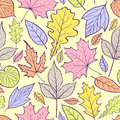 Colorful leaves vector illustration of seamless pattern with Royalty Free Stock Image