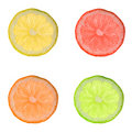 Colorful lemon slices Stock Photo