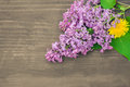 Colorful lilac flowers on wooden background