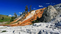 Colorful limestone travertine at mammoth hot springs in yellowstone national park wyoming Stock Image