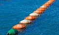 Colorful Lobster Buoys, Fishing tool Royalty Free Stock Photo