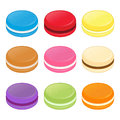 Colorful Macaroons Cookies Vector Illustration