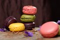 Colorful macaroons stacked on wooden plate Royalty Free Stock Image
