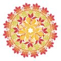 Colorful mandala with autumn leaves and branches on white background. Autumn bouquet.
