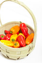 Colorful mini peppers orange yellow and red bell Stock Photos