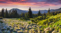 Colorful morning panorama of the Carpathian mountains. Royalty Free Stock Photo