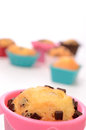 Colorful muffins Royalty Free Stock Photo