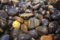 Colorful natural pebbles when wetting Royalty Free Stock Photos