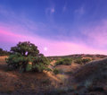 Colorful Night Landscape With ...