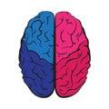 Colorful outline brain mark.