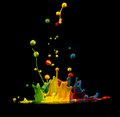 Colorful paint splashing isolated on black Royalty Free Stock Photo