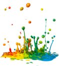 Colorful paint splashing on white background Stock Photos