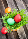 Colorful painted easter egg on a fresh green grass in yellow bucket Stock Photos