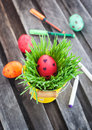Colorful painted easter egg on a fresh green grass in yellow bucket Royalty Free Stock Photos