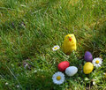 Colorful painted easter eggs on a green grass