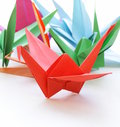 Colorful paper origami birds Royalty Free Stock Photo