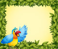 A colorful parrot and the green leafy frame illustration of Stock Images