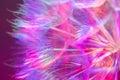 Colorful Pastel Background - V...