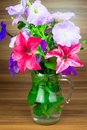 Colorful Petunia Blooms In A G...