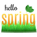 Colorful phrase Hello Spring with green leaves