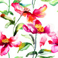 Colorful poppy flower seamless wallpaper with peony watercolor illustration Royalty Free Stock Images