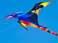 Colorful pterodactyl kite flying in a bright blue sky at the long beach kite festival Stock Photography
