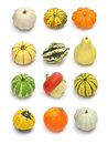 Colorful pumpkin and squash collection halloween background parts Stock Image