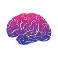 Colorful qradient brain mark.